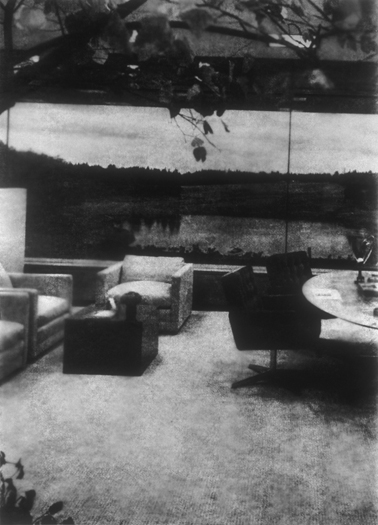 Tree/Lake, Gelatin Silver Print, 73in x 55in, 1997