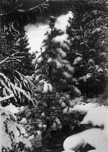 Snowbank, Gelatin Silver Print, 65in x 47in, 2005-6