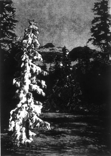 White Tree/Mountain, Gelatin Silver Print, 64in x 46in, 2005-6