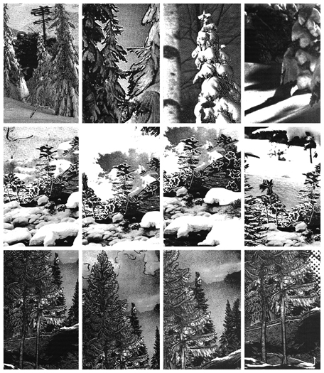 Winter Trees DETAIL, Gelatin Silver Prints, 9 feet x 18 feet, (114 individual 17in x 11in prints), 2006